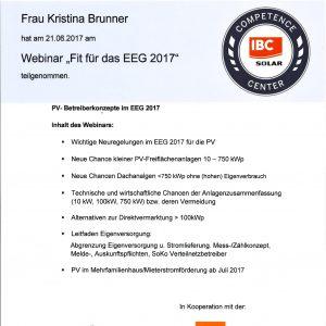 Teilnahmezertifikat IBC Webinar EEG2017